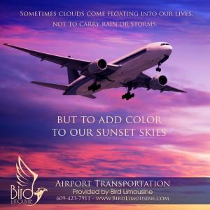 Bird Limousine airport transportation