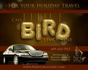 Bird Limousine car service