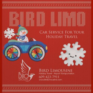 Bird limousine holiday travel
