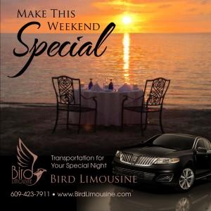 Bird Limousine limo specials